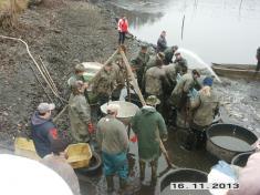 Výlov rybníku Huťský 2013